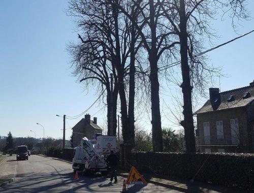 Concept Elagage à Saint-ouen-des-toits