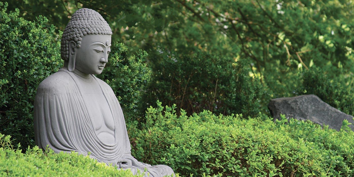 Comment Se Débarrasser Des Bambous Dans Le Jardin le jardin japonais : caractéristiques et composition