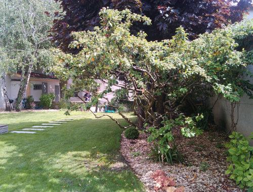 Ty Jardin Paysagiste à Coatreven