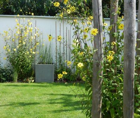 Jardins d'Hortense à Médréac